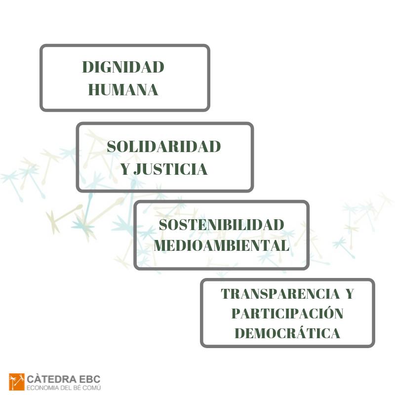 Dignidad Humana, Solidaridad, Sostenibilidad ecológica, Justicia social, Participación democrática y Transparencia