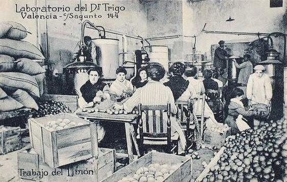 Il·lustració 3. Laboratori de la Granja-Escola de Levante creat per l'Institut de Reforma Agrària durant els anys finals de la Segona República.