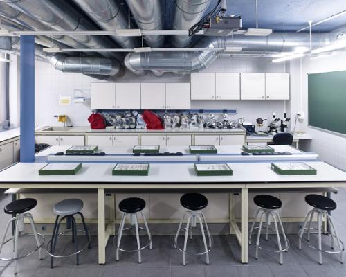 Laboratori de pràctiques 3. Clase de zoologia. Facultat de Biologia. Campus de Burjassot- Paterna. © Mario Rabasco