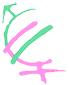 SIEGmu – Seminario Interdisciplinar de Estudios de Género