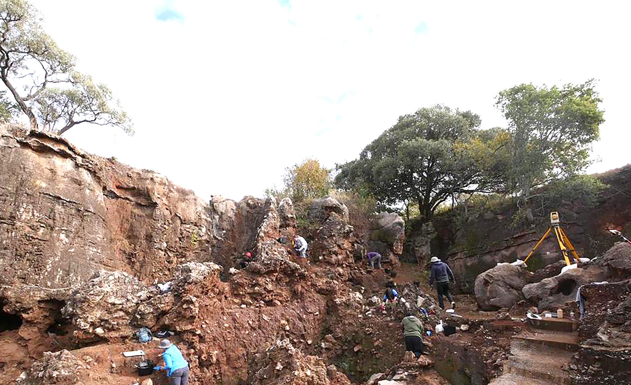 Lloc de la troballa, jaciment de Drimolen (Johannesburg). Foto de la Trobe University