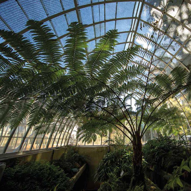 Jardí Botànic de la Universitat de València