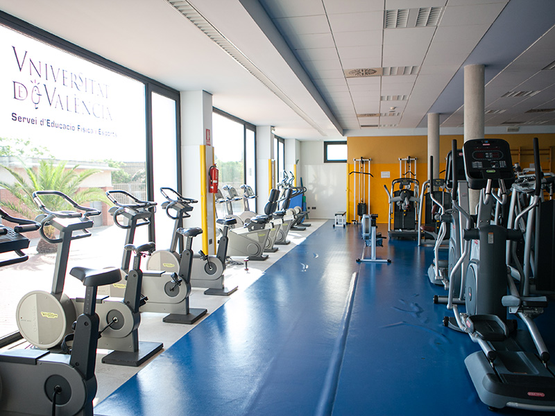 Campus de tarongers for Gimnasio 46010
