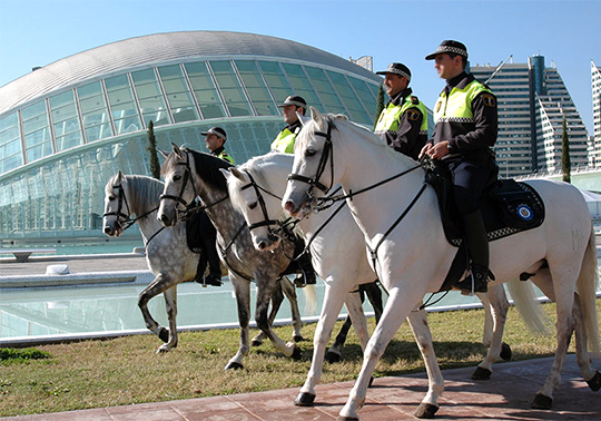 Policies officers on horseback