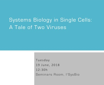 Systems Biology in Single Cells: A Tale of Two Viruses