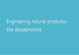 Engineering natural products– the abyssomicins