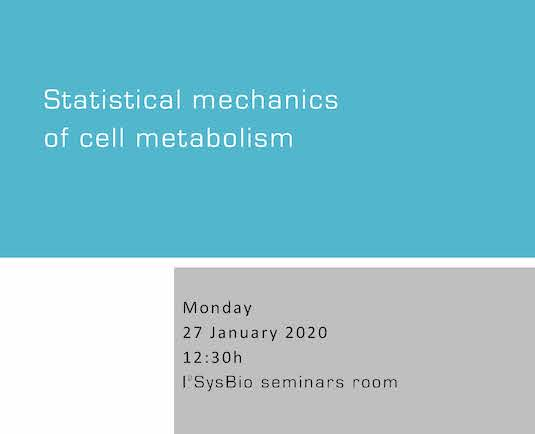 Statistical mechanics of cell metabolism