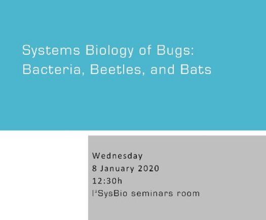 Systems Biology of Bugs: Bacteria, Beetles, and Bats