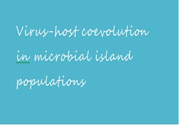 Virus-host coevolution in microbial island populations