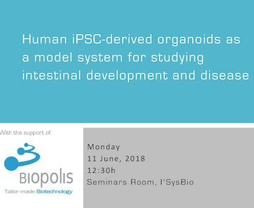 Human iPSC-derived organoids as a model system for studying intestinal development and disease