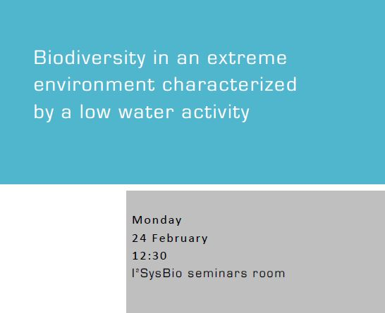 Biodiversity in an extreme environment characterized by a low water activity