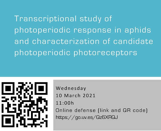 Transcriptional study of photoperiodic response in aphids and characterization of candidate photoperiodic photoreceptors