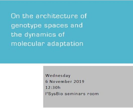 On the architecture of genotype spaces and the dynamics of molecular adaptation