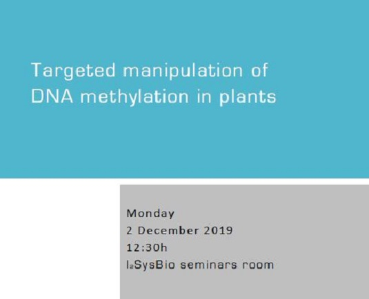 Targeted manipulation of DNA methylation in plants