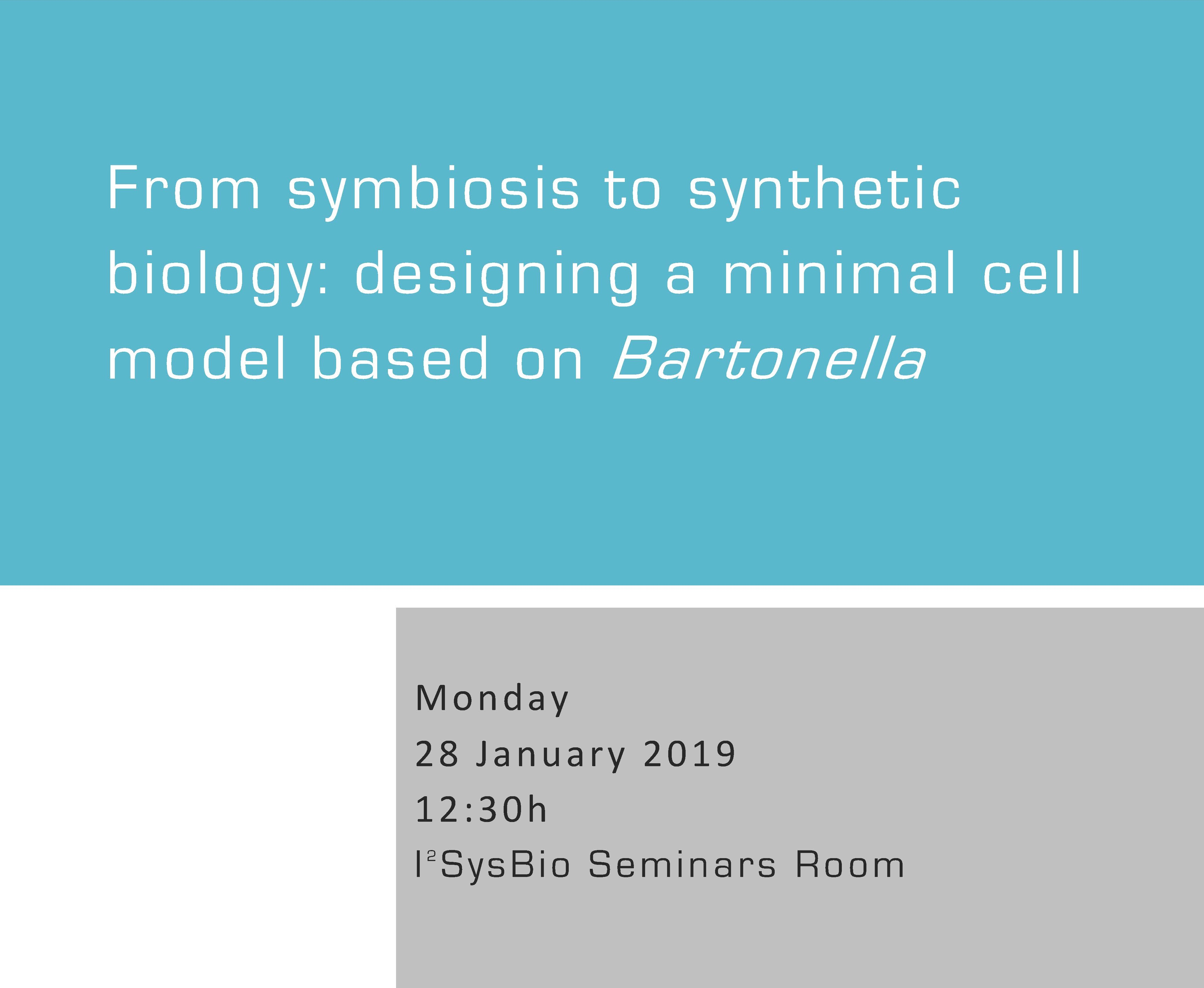 From symbiosis to synthetic biology: designing a minimal cell model based on Bartonella