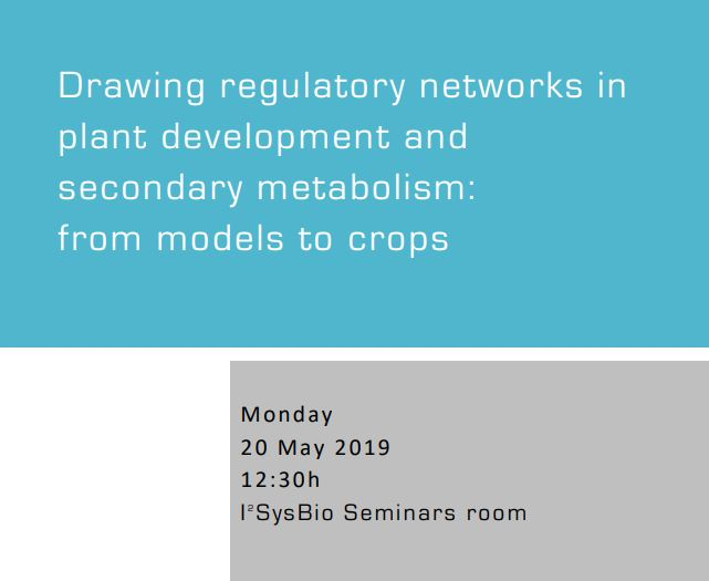 Drawing regulatory networks in plant development and secondary metabolism: from models to crops