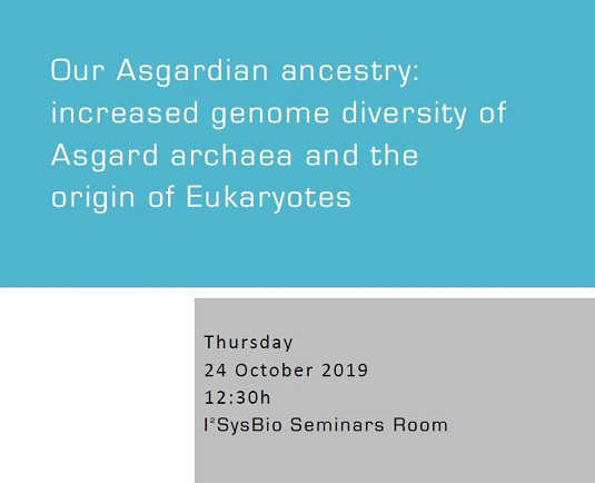 Our Asgardian ancestry: increased genome diversity of Asgard archaea and the origin of Eukaryotes