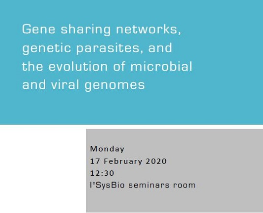 Gene sharing networks, genetic parasites, and the evolution of microbial and viral genomes