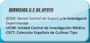 Servicio C-T de Apoyo