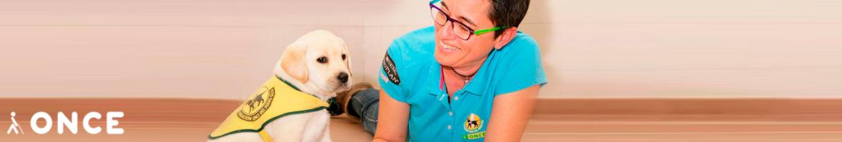 Enlace a la web de la Organización Nacional de Ciegos Españoles (ONCE)