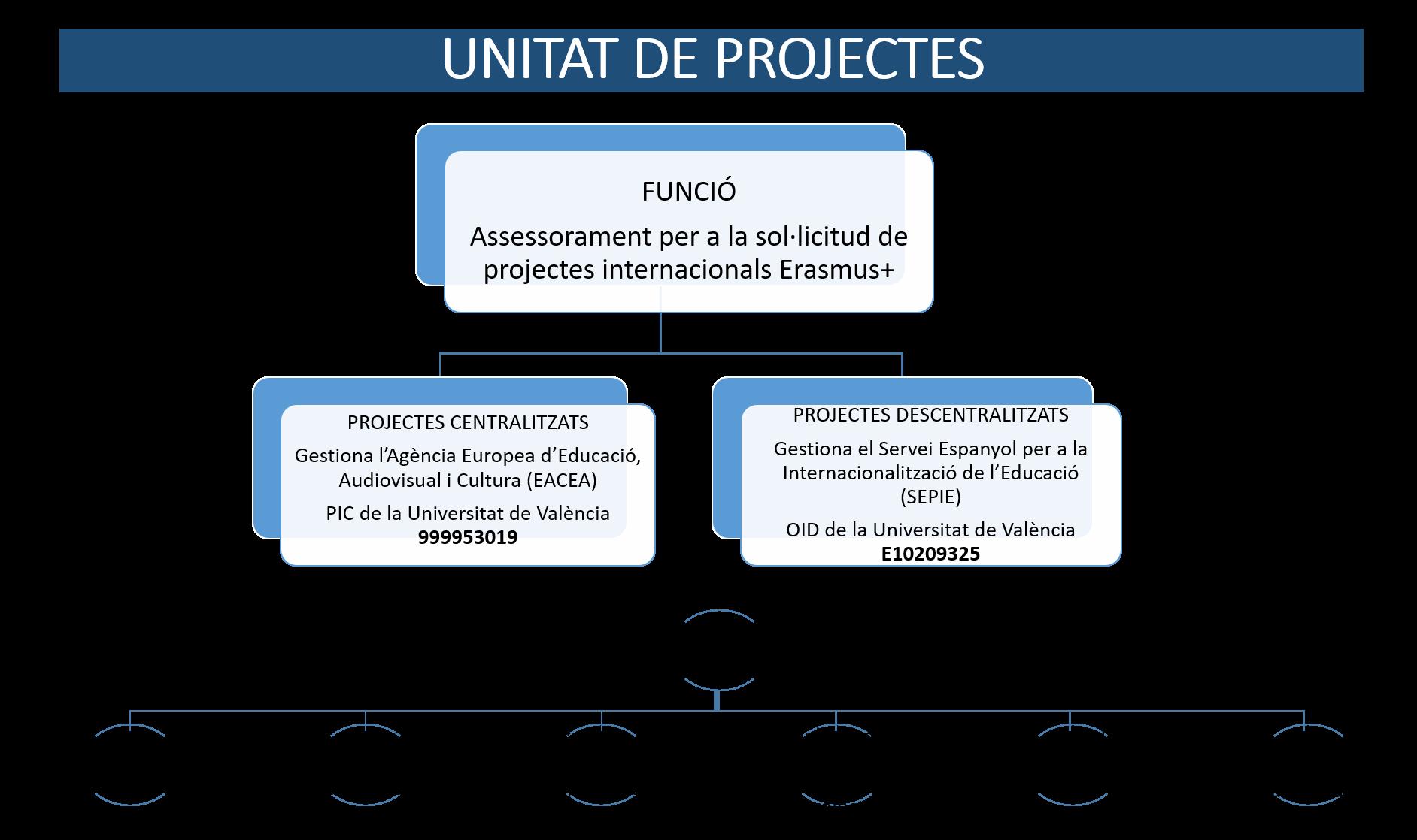 Unitat Projectes